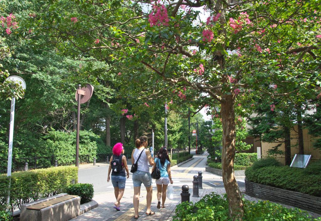三鷹の風の散歩道 三鷹市ジブリ美術館に多くの外国人が訪れます