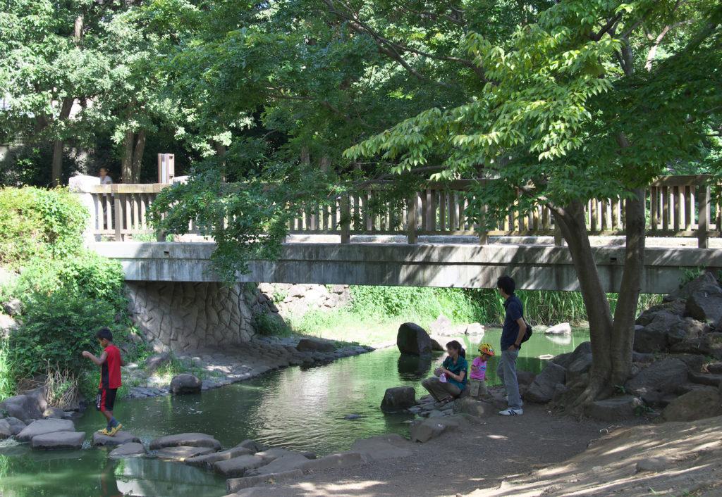 吉祥寺 井の頭公園の中の神田川夕焼け橋