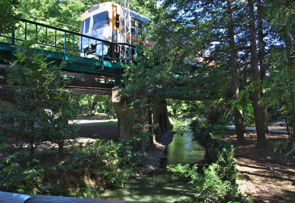 吉祥寺 井の頭公園の神田川を渡る京王井の頭線電車