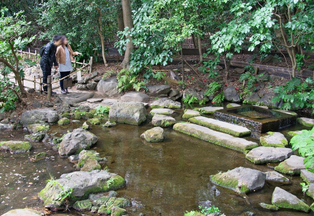吉祥寺 井の頭公園のお茶の水