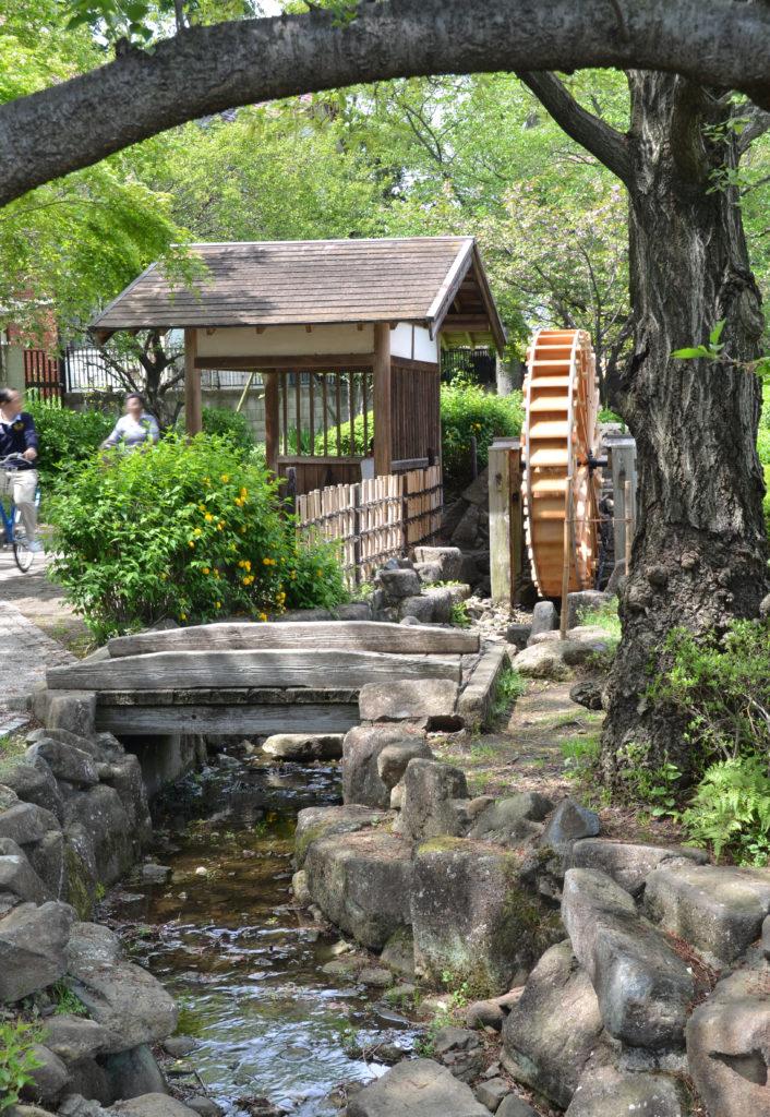 三鷹 野川の水車