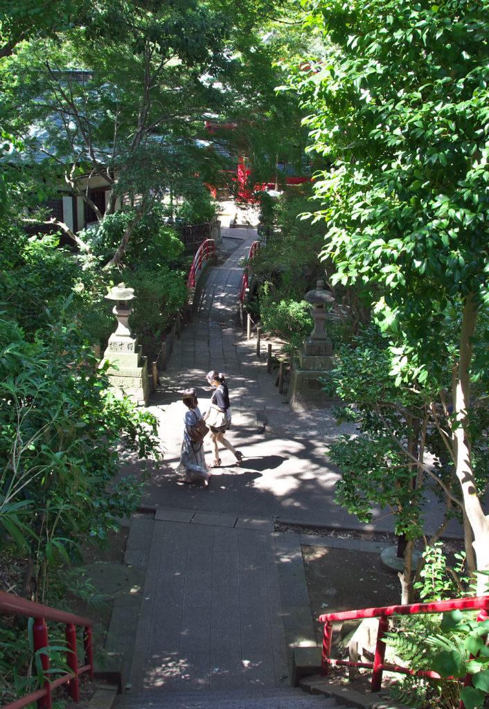 三鷹 井の頭弁財天 紫灯籠から弁財天太鼓橋を望む