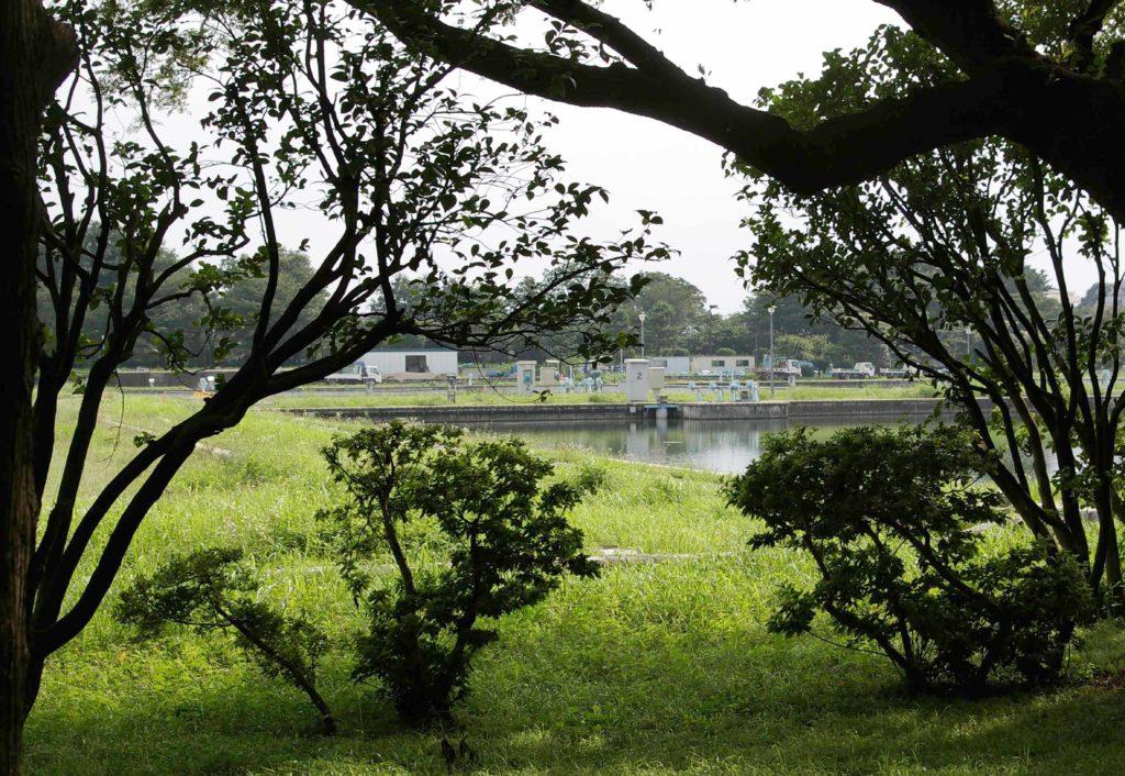 武蔵野市 境上水場