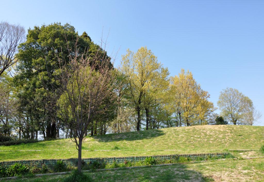 三鷹 みはらし山公園