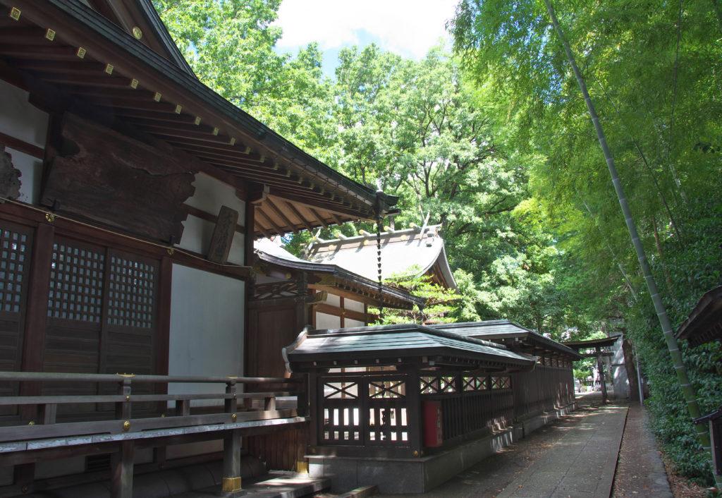 三鷹八幡大神社 拝殿の横から本殿を見たところ