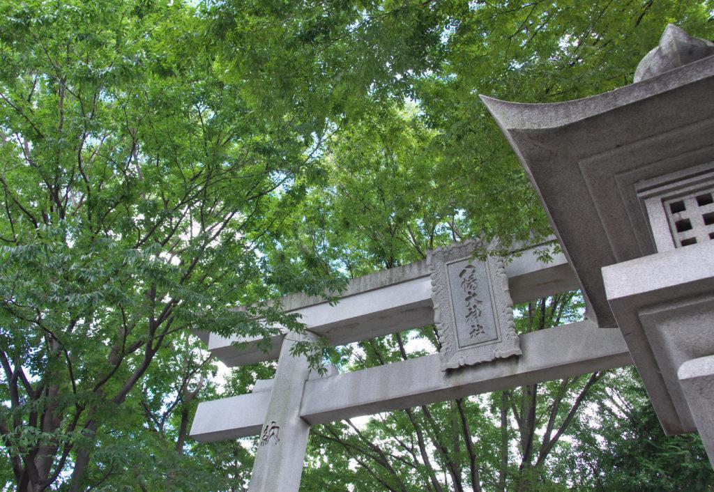 三鷹八幡大神社 新緑の季節は、緑が映えます