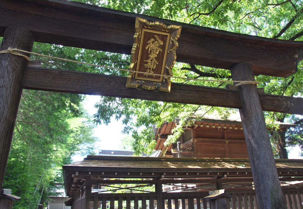 本殿裏にある木で作られた鳥居