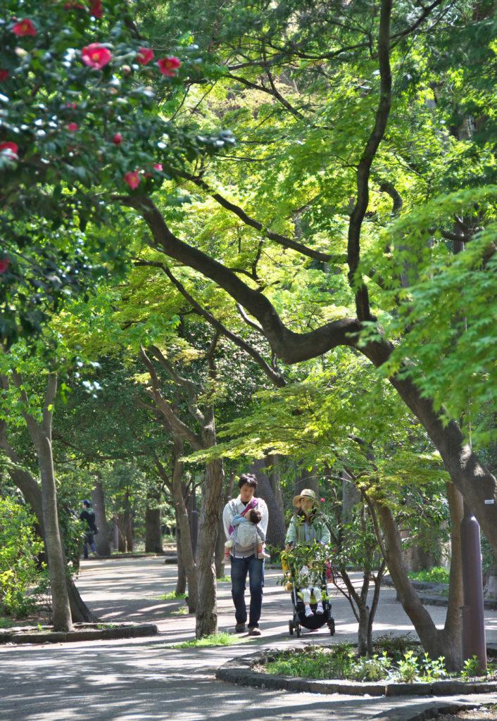 吉祥寺 井の頭公園 西園
