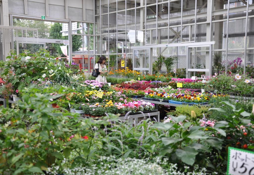 三鷹 農業公園・緑化センター・JA東京むさし 温室
