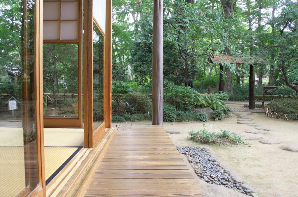 吉祥寺 井の頭自然文化園 童心居縁側からの眺め