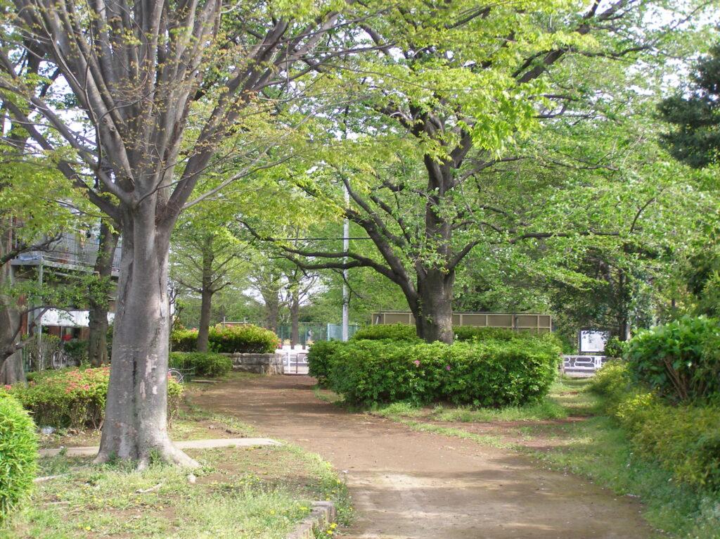 三鷹 堀合遊歩道 三鷹駅北口からすぐの静かな散歩道