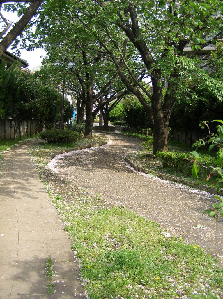 三鷹 堀合遊歩道 廃線あと特有の緩いカーブを描く散歩道
