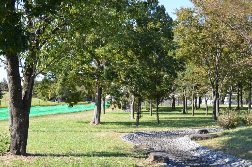 三鷹 武蔵野の森公園 遊びの広場にある人工の川