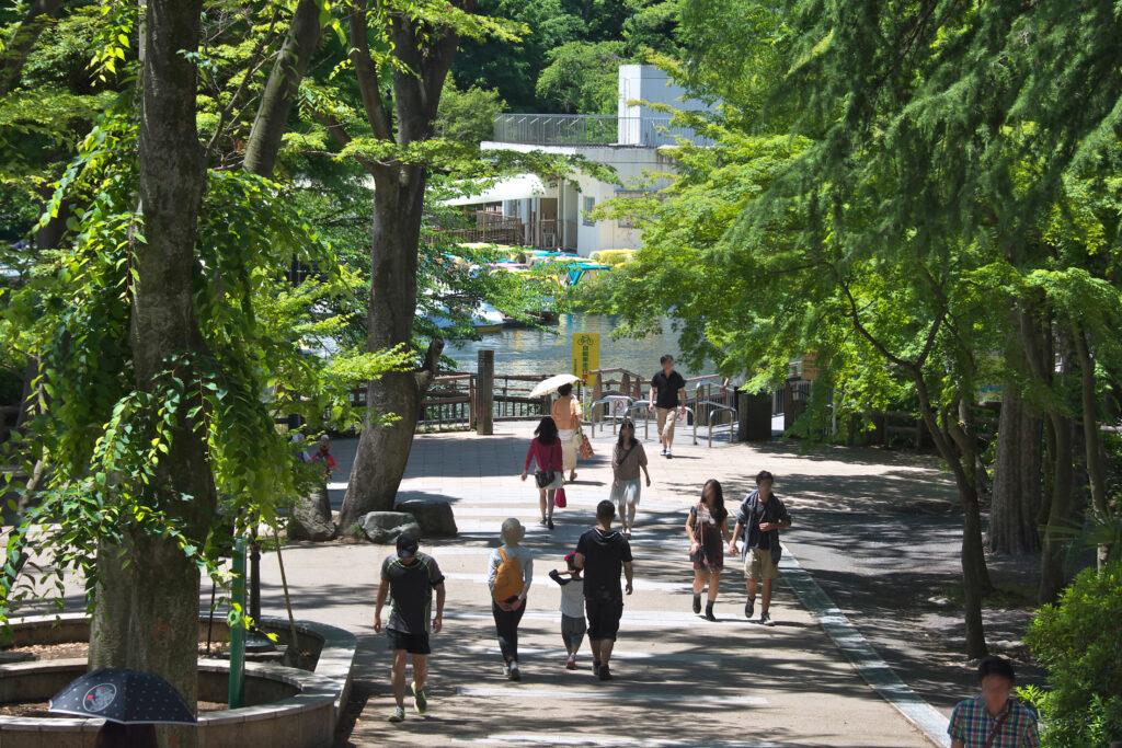 井の頭公園から七井橋通りに続く階段