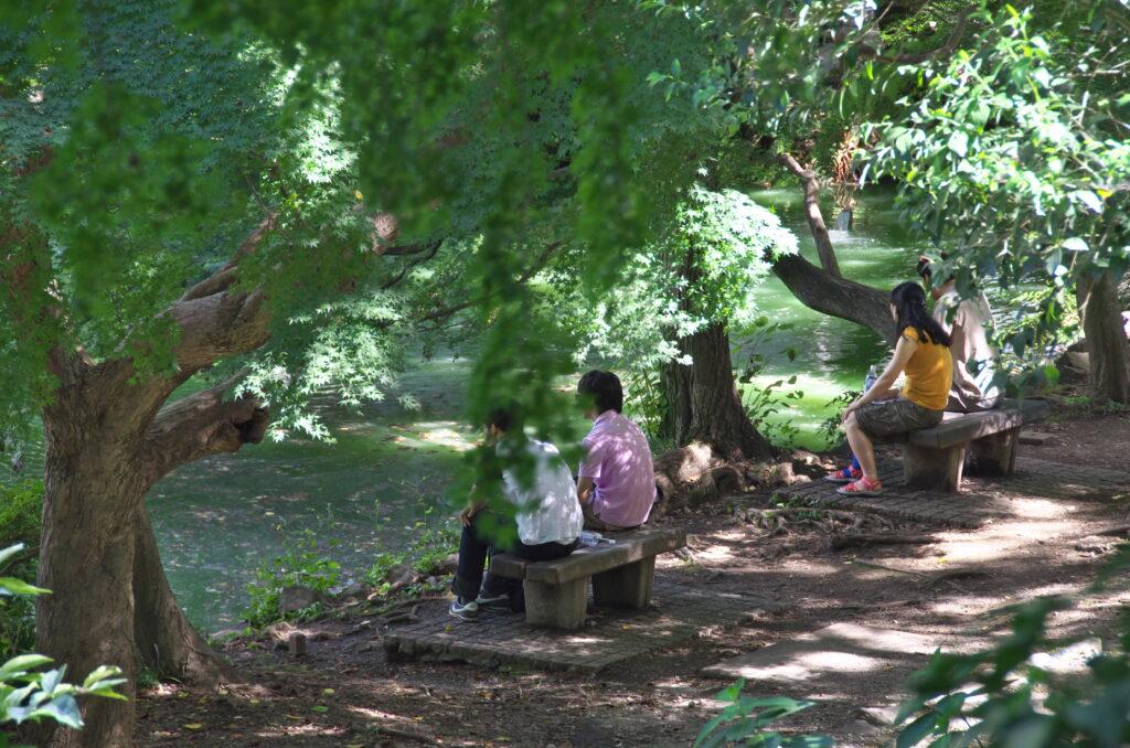 井の頭公園 水辺