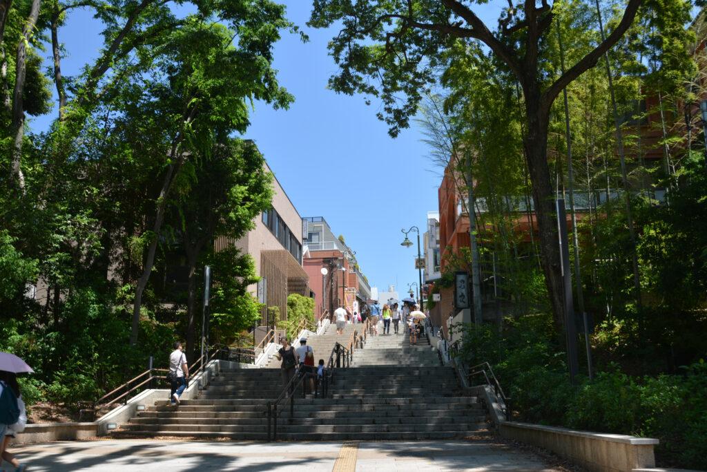 井の頭公園 吉祥寺駅に続く七井橋通り