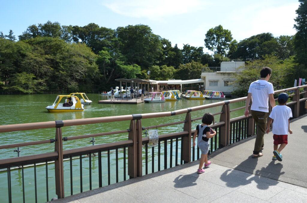 井の頭公園 七井橋からボート場を望む