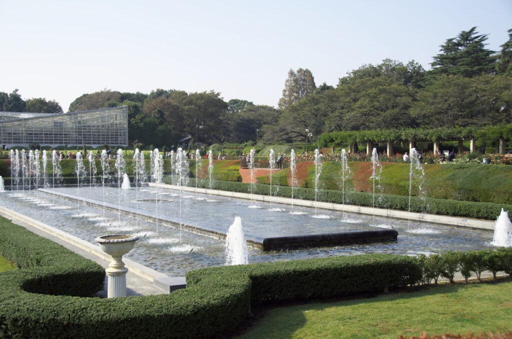 調布 神代植物公園・バラ園 バラ園に囲まれた大噴水