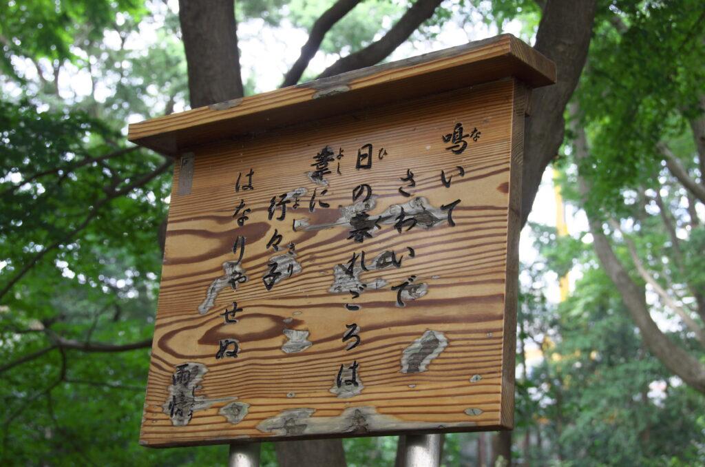 井の頭公園 野口雨情の碑