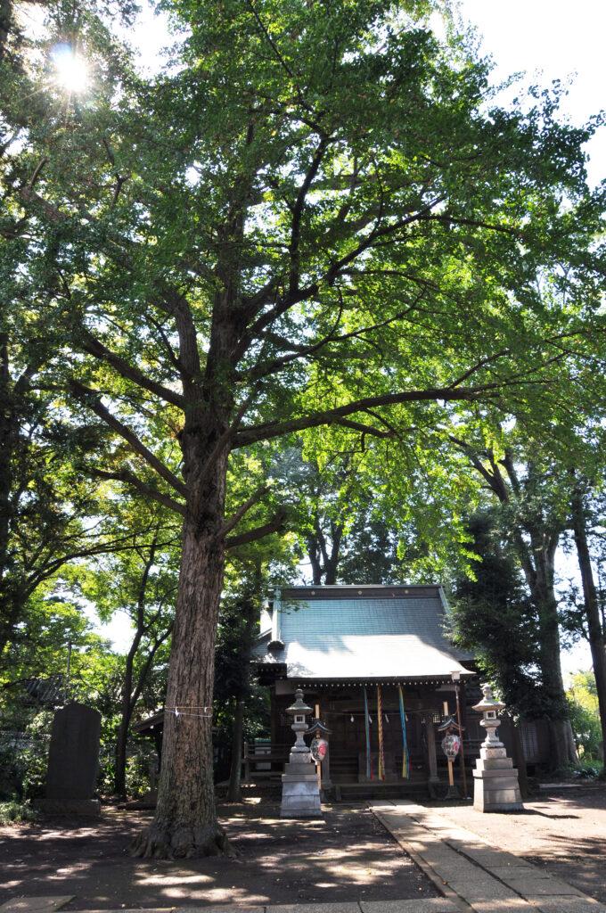 三鷹 神明社