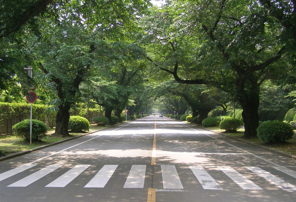三鷹 ICU 湯浅八郎記念館