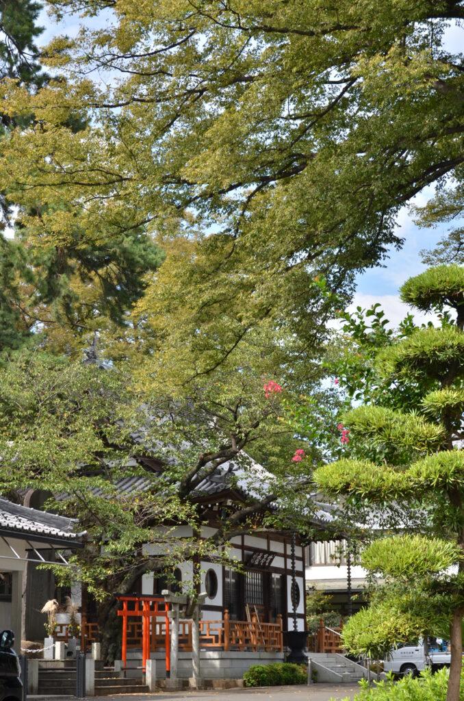 三鷹 禅林寺・太宰治の墓